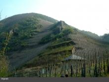 La Valle della Mosella